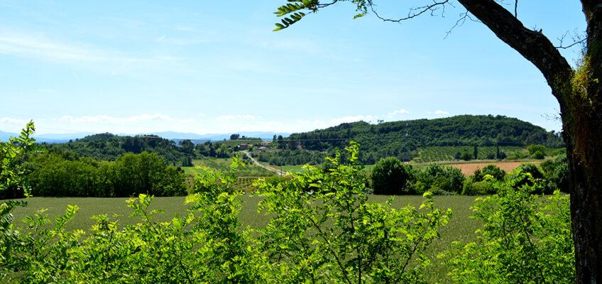 La Drôme des collines, saveurs de la campagne