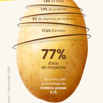 La pomme de terre : une pépite nutritionnelle !