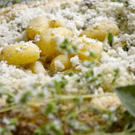 Les Délicatesse en croûte de sel, crémeux d'algues, œufs de saumon et oseilles